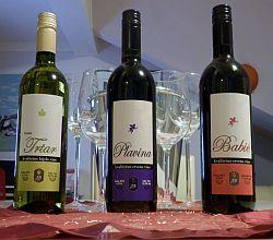 wine_year_2012autohton_sibenik